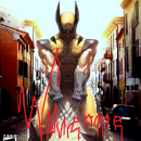 Wolverine Box Art Cover