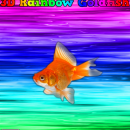 3D Rainbow Goldfish Box Art Cover