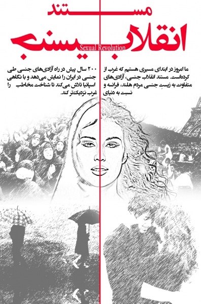 Sexual Revolution (مستند انقلاب جنسی) box art cover