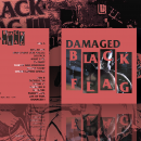 Black Flag - Damaged Box Art Cover