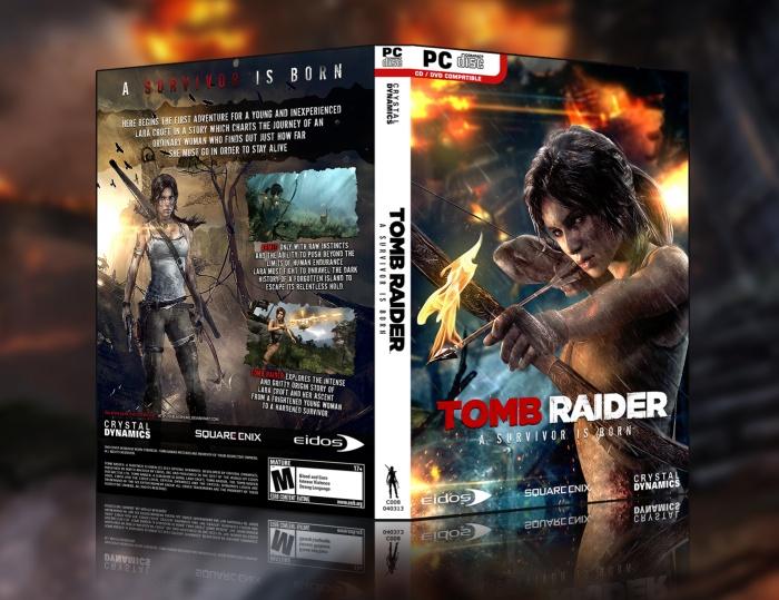 tomb raider 2013 cover art