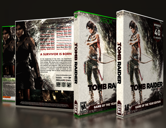 Tomb Raider GOTY box art cover