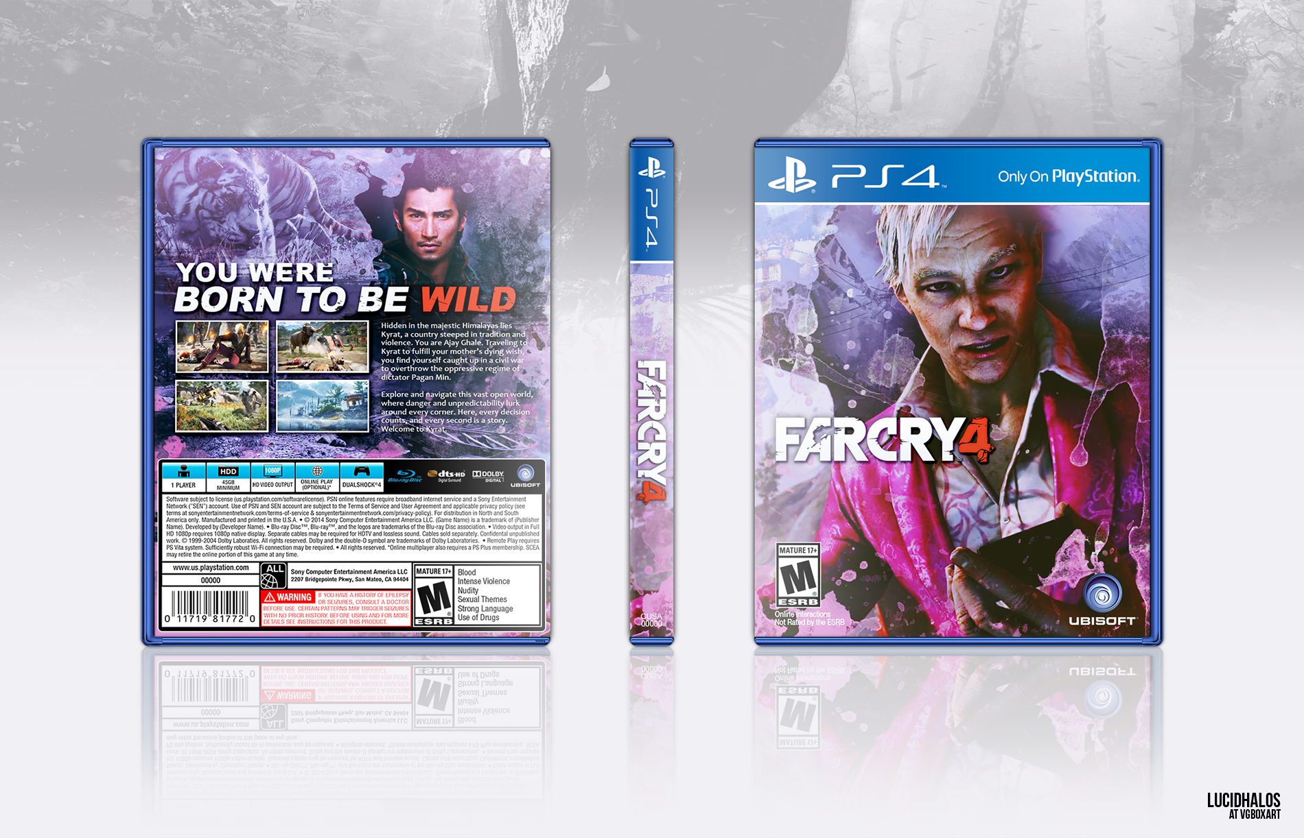 Far Cry 4 PlayStation 4 Box Art Cover by lucidhalos