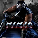 Ninja Gaiden Box Art Cover