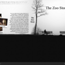The Zoo Story Box Art Cover