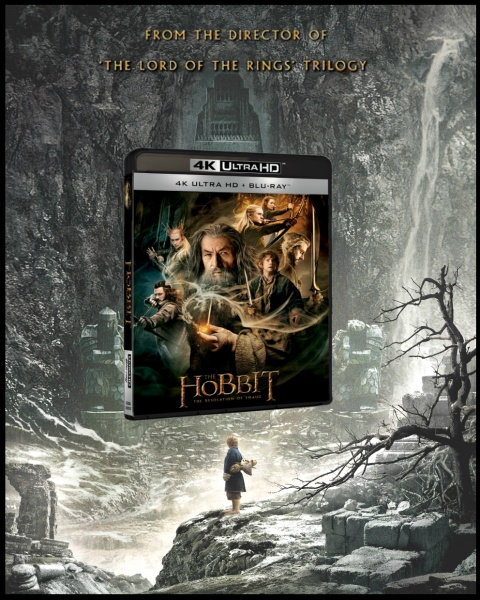 The Hobbit: The Desolation of Smaug Movies Box Art Cover by AshNazg